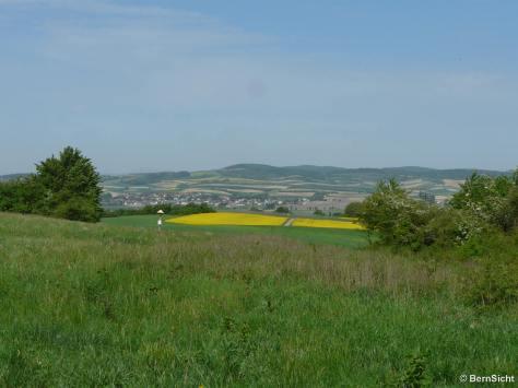 15-p1150642-stetter-berg-harmannsdorf_prot_1600x1200_250kb